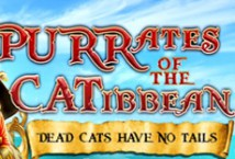 Purrates of the Catibbean играть демо онлайн | VAVADA Казино бесплатно